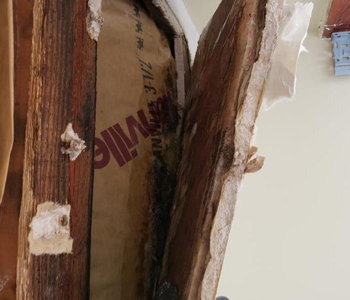 How to remove mold safely from your home? Before