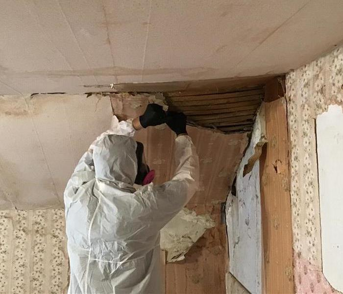 Commercial Mold Damage After