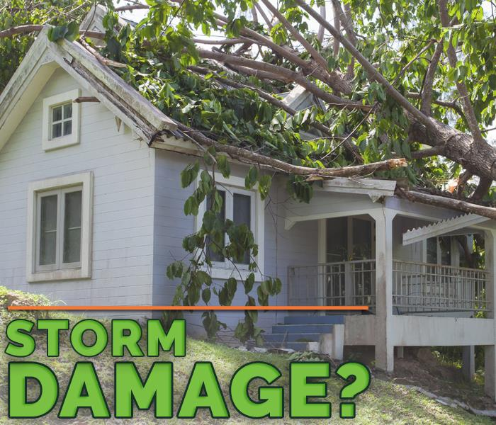 Storm Damage How To Stay Safe When a Thunderstorm Threatens Your Business
