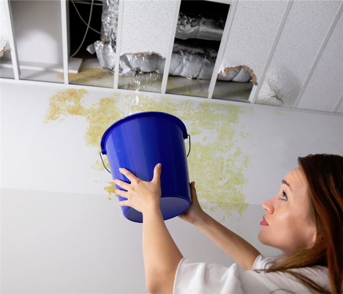 woman holding a blue bucket under a leaking ceiling