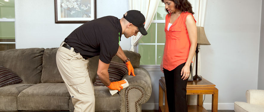 Hackettstown, NJ carpet upholstery cleaning